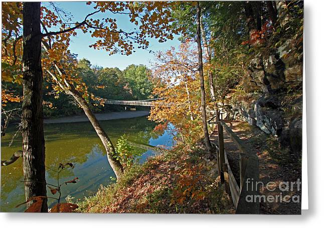 Turkey Run State Park Greeting Cards - Trail to the bridge Greeting Card by Steve  Gass