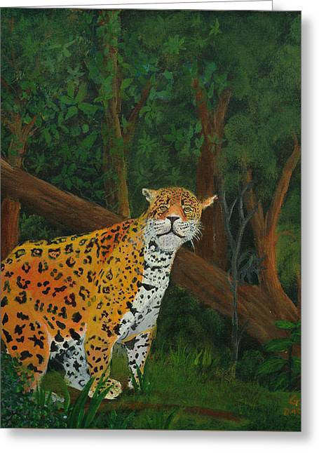 Jaguars Greeting Cards - Training wheels Greeting Card by Godwin  Darko