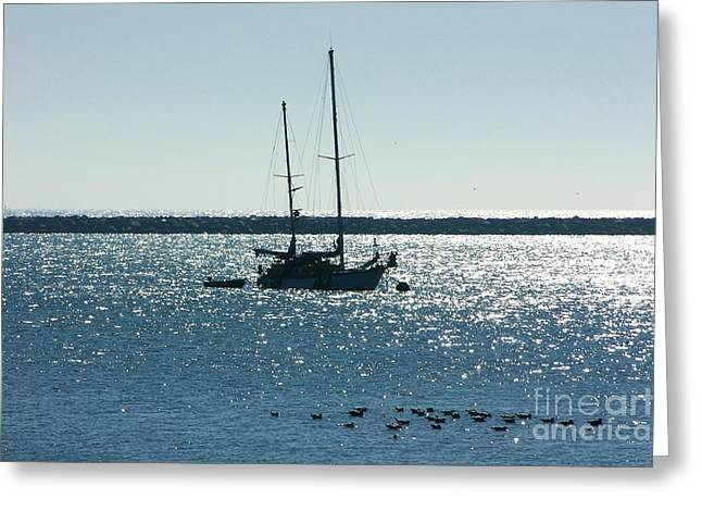 Tranquil Bay Greeting Card by Carol Groenen