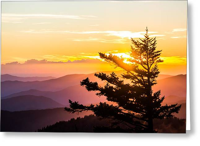 Tranquil Colors Greeting Card by Shelby Young