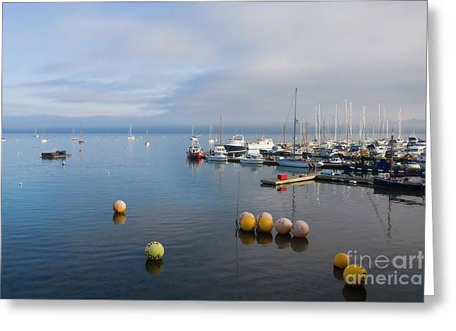 Tranquil Mylor Marina Greeting Card by Terri Waters