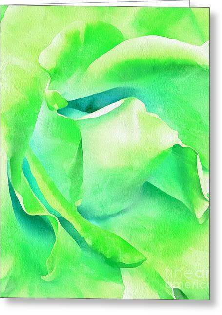 Tranquil Petals Greeting Card by Krissy Katsimbras