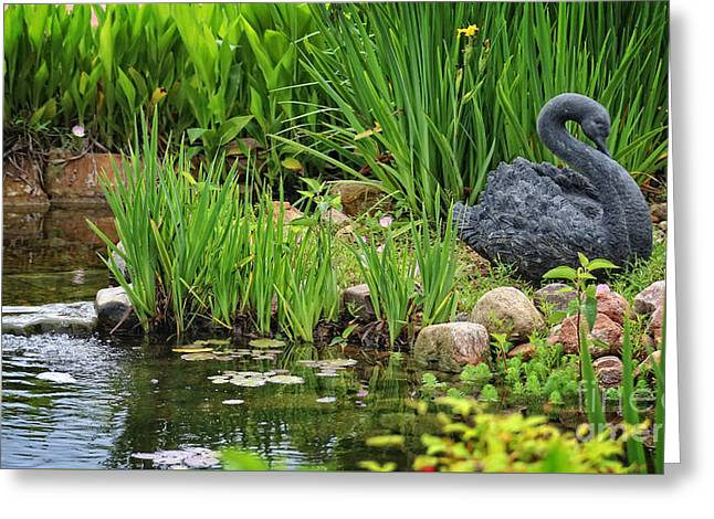 Swans... Greeting Cards - Tranquil Sights and Sounds Greeting Card by Ella Kaye Dickey