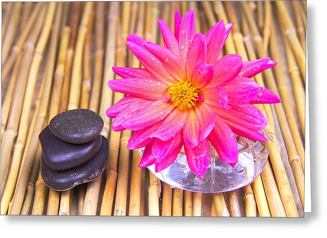 Glass Vase Greeting Cards - Tranquil Zen stones And Dahlia Greeting Card by Daphne Sampson