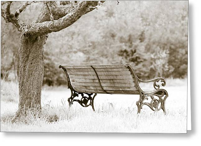Park Benches Photographs Greeting Cards - Tranquility Greeting Card by Frank Tschakert