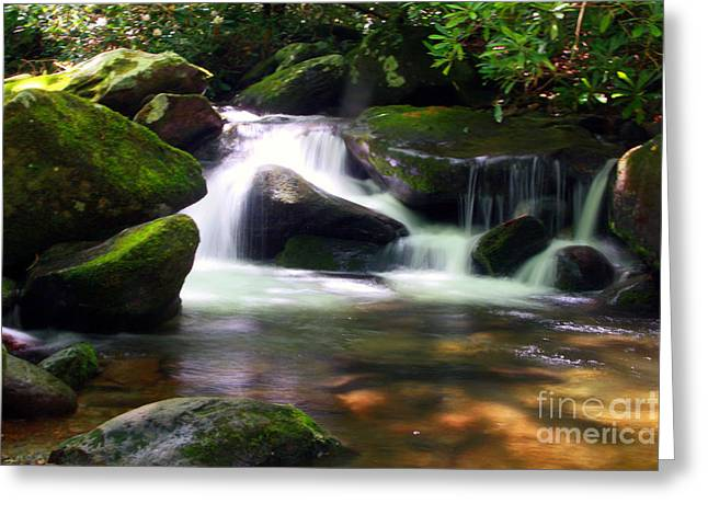 Tn Greeting Cards - Tranquility Greeting Card by Southern Arts