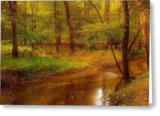 Tranquility Stream - Allaire State Park Greeting Card by Angie Tirado