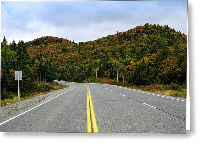 Double Yellow Lines Greeting Cards - Trans-canada Highway Through Northern Greeting Card by Panoramic Images