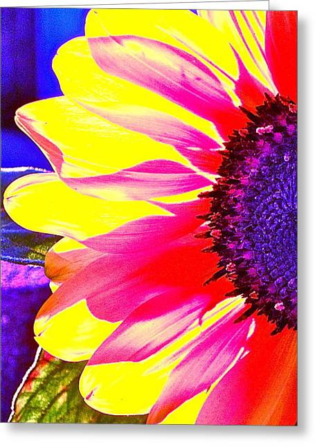 Tropical Photographs Digital Greeting Cards - Transformed Greeting Card by Gwyn Newcombe