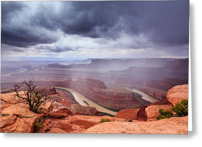 Southern Utah Greeting Cards - Transition Greeting Card by Gina Herbert