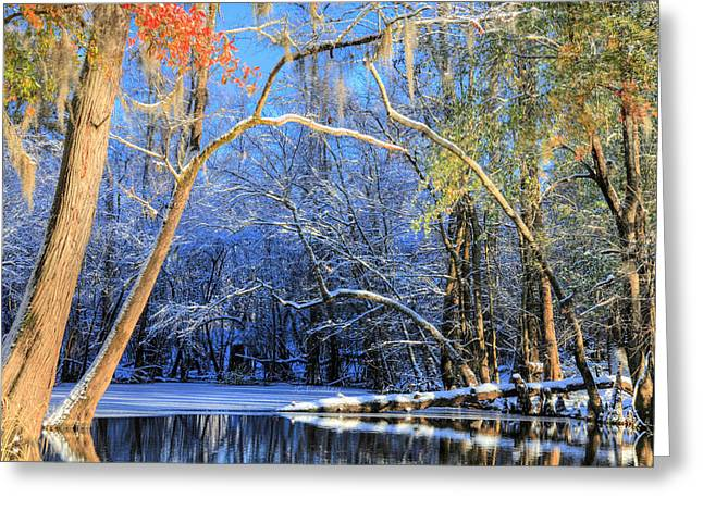 Cape Fear River Greeting Cards - Transitions  Greeting Card by JC Findley