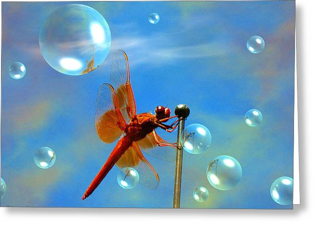Transparent Red Dragonfly Greeting Card by Joyce Dickens