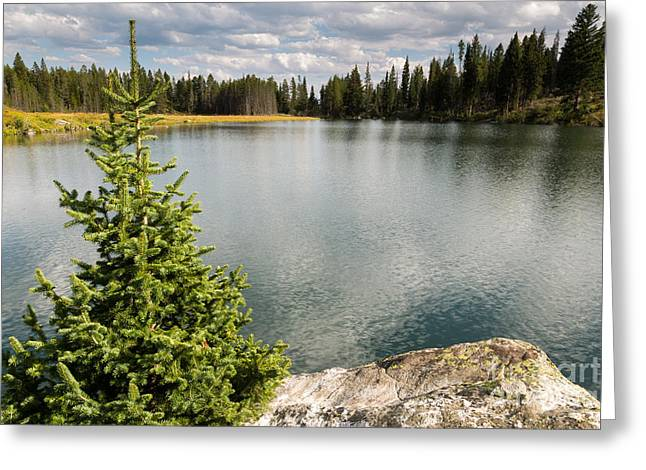 Reflecting Water Greeting Cards - Trapper Lake Greeting Card by Mike Cavaroc