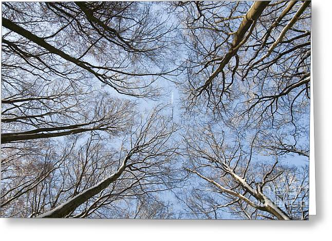 Himmel Greeting Cards - Travelers Greeting Card by Meike Hofstetter