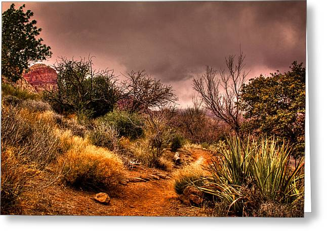 Oxide Greeting Cards - Traveling the Trail at Red Rocks Canyon Greeting Card by David Patterson