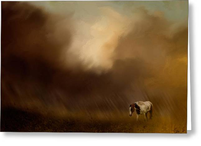 Traveling Through The Storm Greeting Card by Jai Johnson
