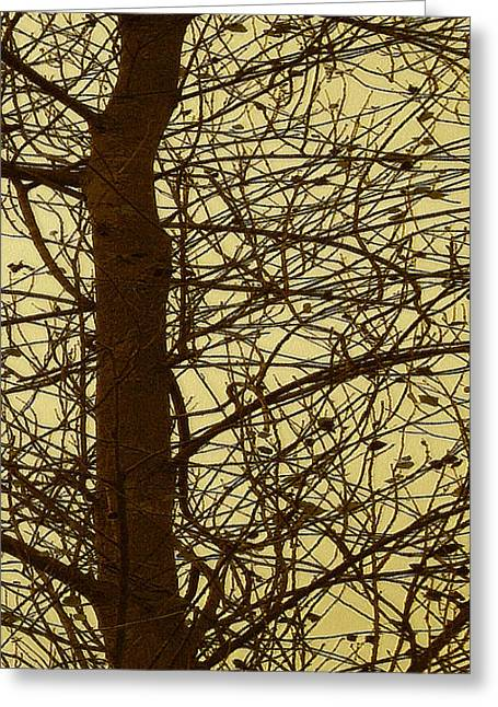 Tree Abstract In Yellow No 3 Greeting Card by Ben and Raisa Gertsberg