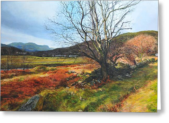 Tree At Aberglaslyn Greeting Card by Harry Robertson