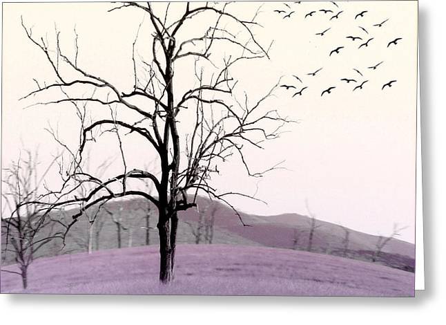 Holly Kempe Greeting Cards - Tree Change Greeting Card by Holly Kempe