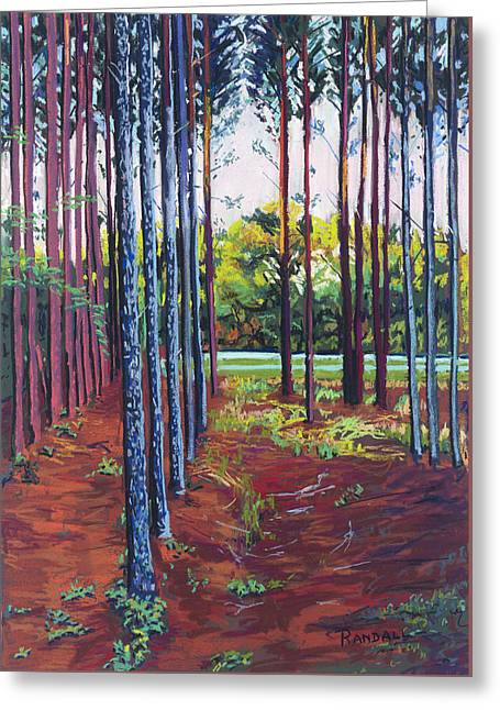 Row Pastels Greeting Cards - Tree Farm Greeting Card by David Randall