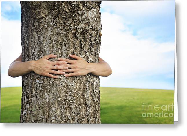 Tree Hugger 2 Greeting Card by Brandon Tabiolo - Printscapes