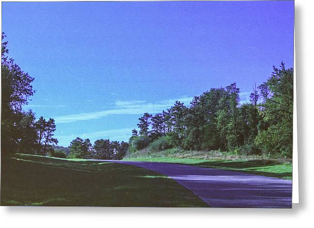 Willow Lake Greeting Cards - Tree Line Road Greeting Card by James Bologna