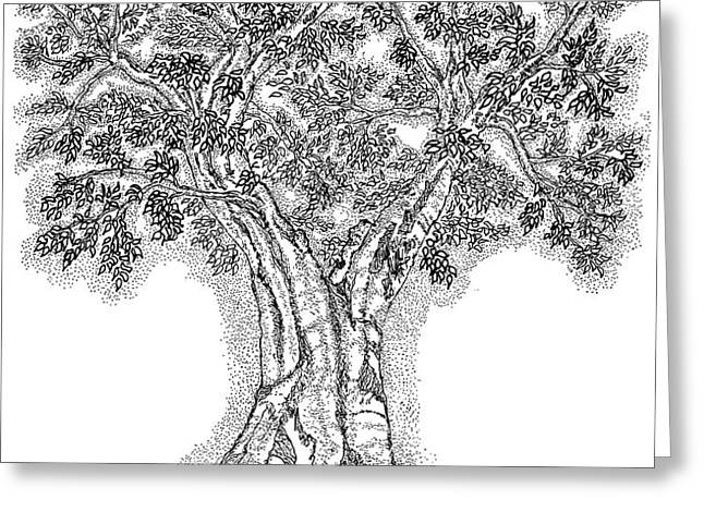 Tree Of Life 1 Greeting Card by Glenn McCarthy Art and Photography