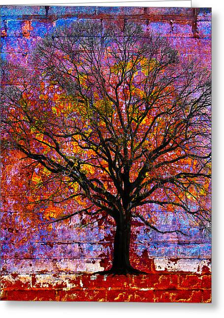 Abstract Digital Greeting Cards - Tree of Life Greeting Card by David Clanton