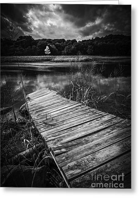 Tree Of Zen Black And White Greeting Card by Edward Fielding