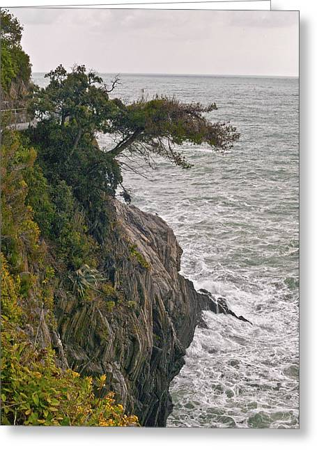 Overhang Digital Art Greeting Cards - Tree on a Cliff Greeting Card by Lynn Andrews