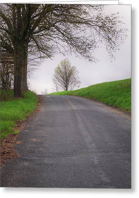 Tree On A Hill Greeting Card by Tom Singleton