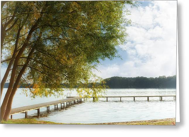 Trees In Autumn Greeting Cards - Tree on sea Greeting Card by SK Pfphotography