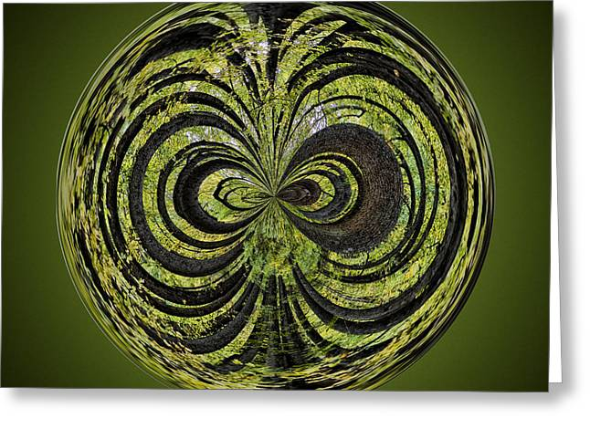 Fractal Orbs Greeting Cards - Tree Orb Greeting Card by Sharon Moore