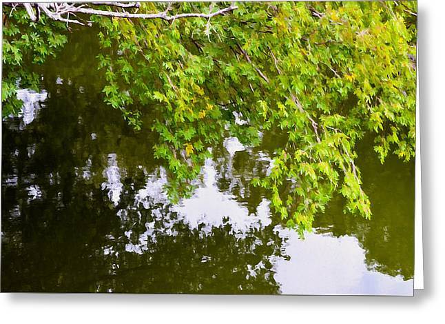 Tree Leaf On Water Greeting Cards - Tree reflection on water 1 Greeting Card by Lanjee Chee