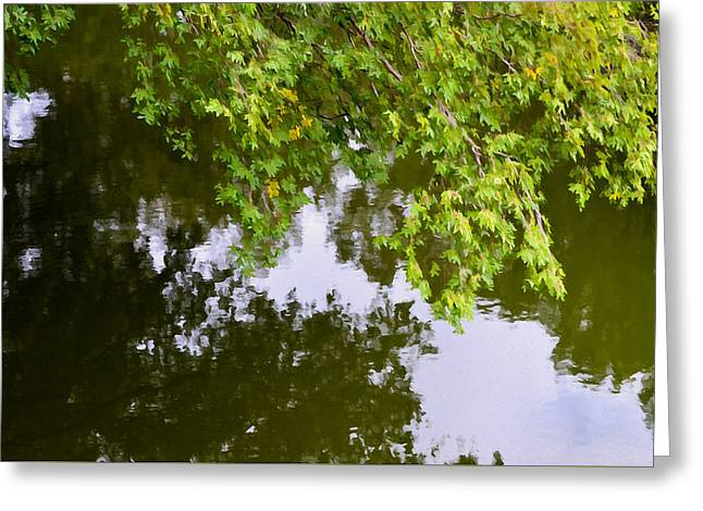 Tree Leaf On Water Greeting Cards - Tree reflection on water 2 Greeting Card by Lanjee Chee