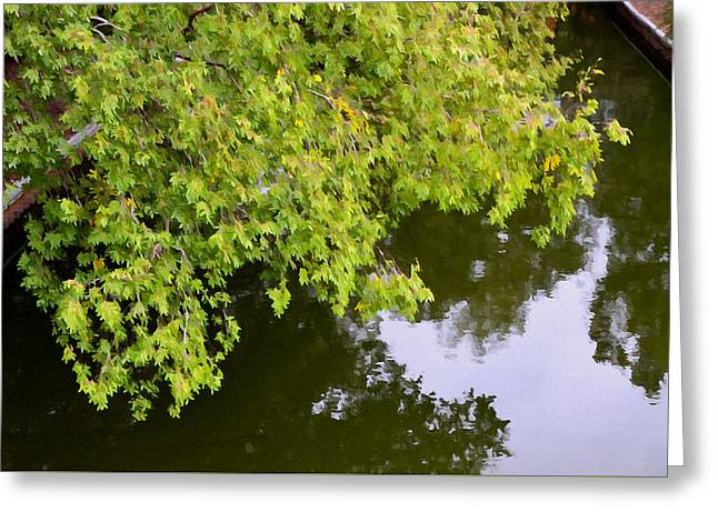 Tree Leaf On Water Greeting Cards - Tree reflection on water 3 Greeting Card by Lanjee Chee