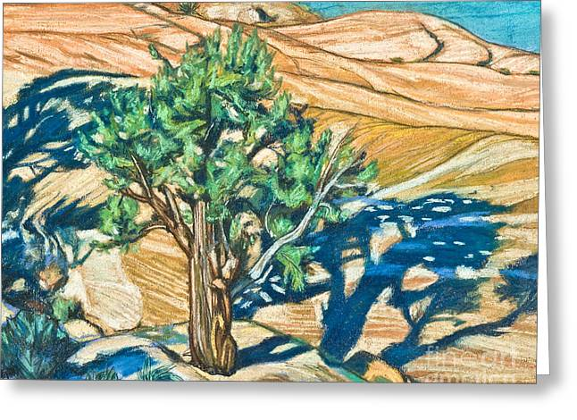 Tree Shadow On Slickrock - Lwtss Greeting Card by Lewis Williams OFS
