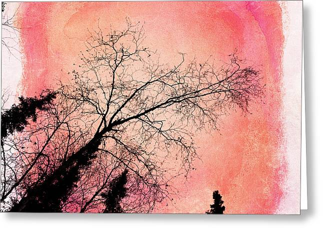 Bare Trees Greeting Cards - Tree silhouettes I Greeting Card by Priska Wettstein