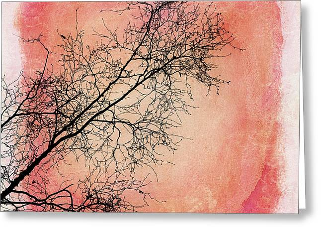 Bare Trees Greeting Cards - tree silhouettes II Greeting Card by Priska Wettstein