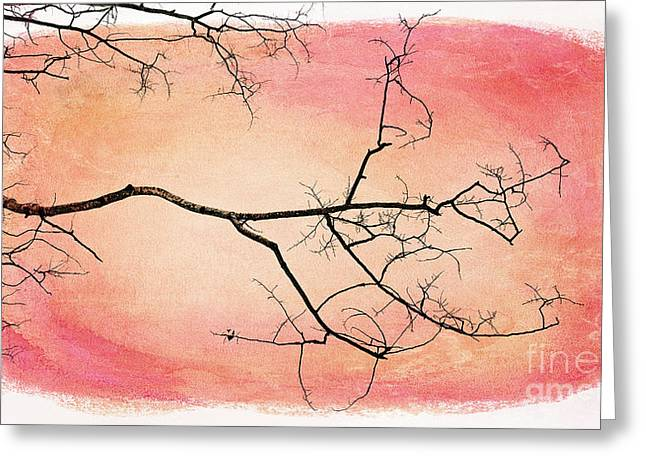 Bare Trees Greeting Cards - tree silhouettes III Greeting Card by Priska Wettstein