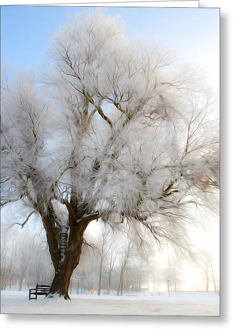 Snow-covered Landscape Digital Art Greeting Cards - Tree Greeting Card by Svetlana Sewell