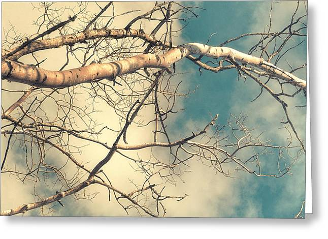 Bare Branches Greeting Cards - Tree Tops 3 Greeting Card by Priska Wettstein