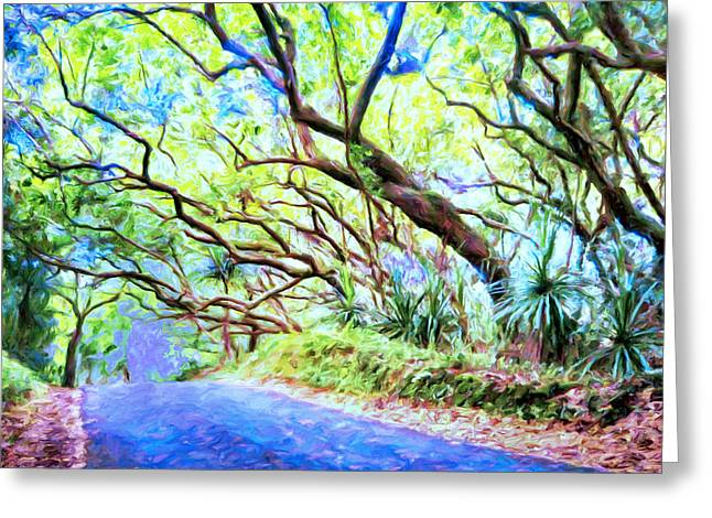 Lahaina Greeting Cards - Tree Tunnel Near Isaac Hale Beach Park Greeting Card by Dominic Piperata