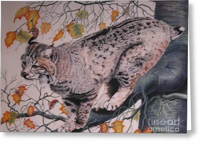 Bobcat Pastels Greeting Cards - Treed Greeting Card by John Huntsman