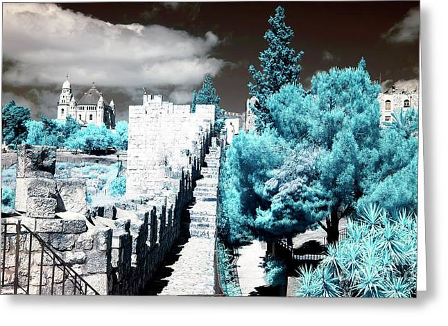 Trees Along The Ramparts Greeting Card by John Rizzuto