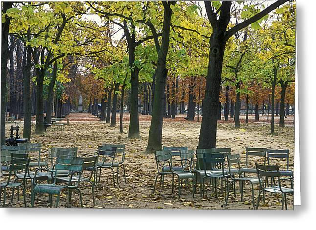 Empty Chairs Photographs Greeting Cards - Trees And Empty Chairs In Autumn Greeting Card by Stephen Sharnoff
