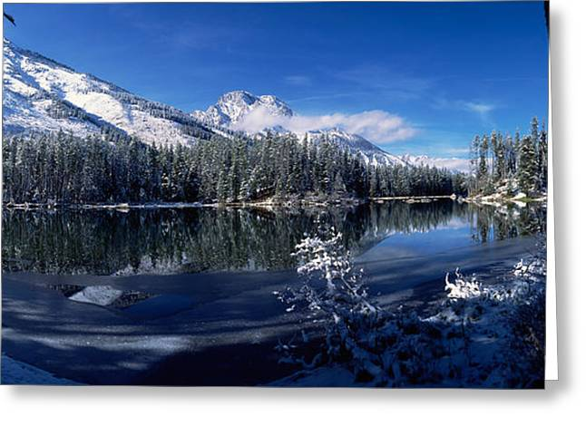 Trees At The Lakeside, Yellowstone Greeting Card by Panoramic Images