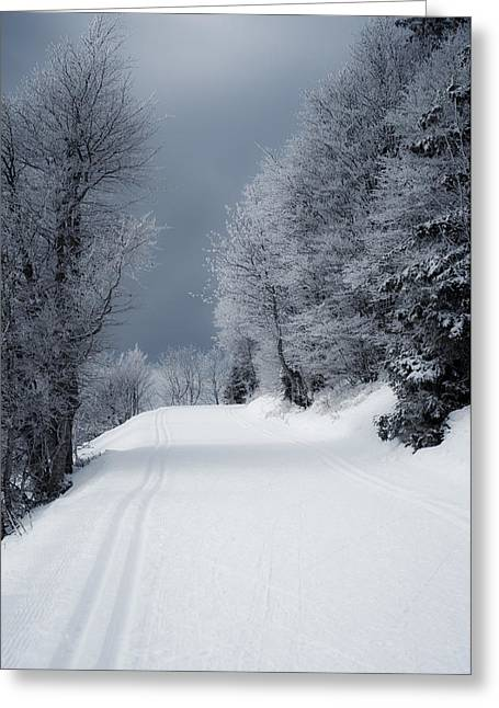 Wandern Greeting Cards - Trees Hills and Snow Greeting Card by Miguel Winterpacht