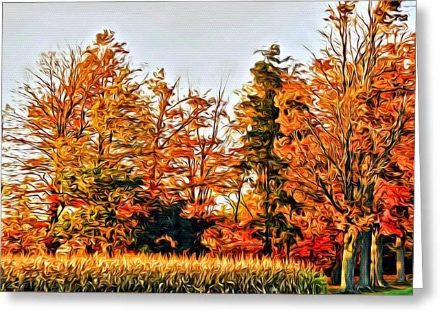 Trees Of Fall 2 Greeting Card by Rhonda Barrett