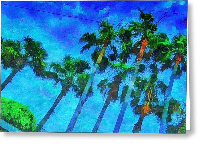 Beach Photography Greeting Cards - Trees of Paradise Greeting Card by Tracy Solomon